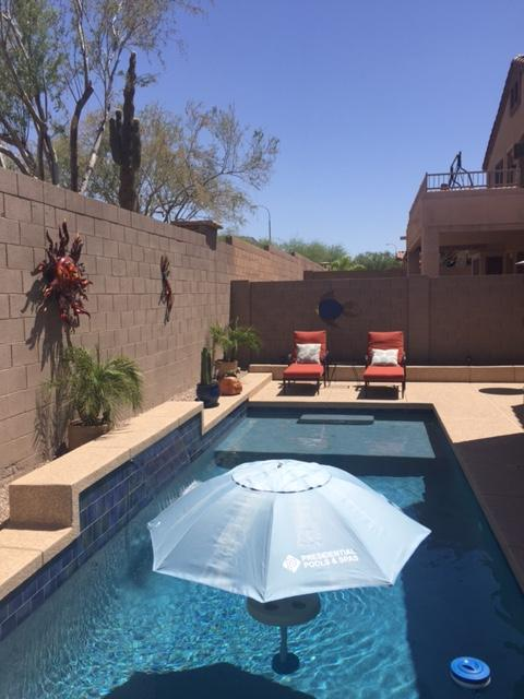 Pool Build Highlight: The Nicholls Family of Phoenix, AZ